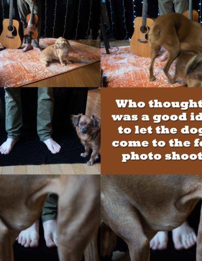 feetshootdogs